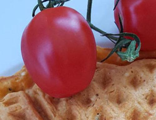 Leckeres herzhaftes Waffelrezept mit Tomate und Zucchini