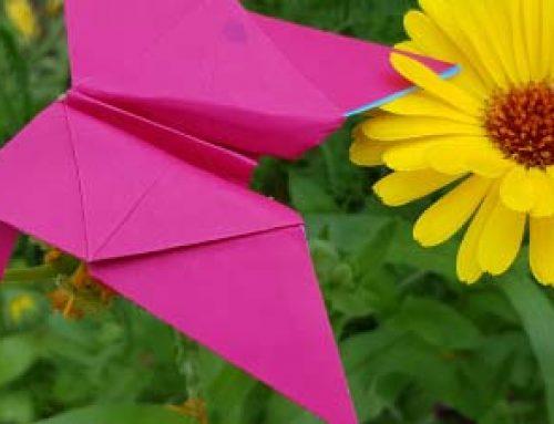Schmetterlinge Origami
