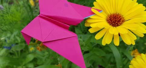 Origami Schmetterlinge falten mit Kindern