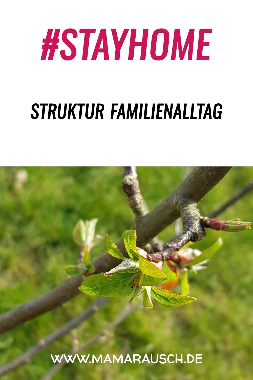Struktur im Familienalltag trotz Corona
